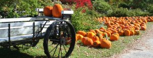 EventsCalendar-Pumpkins